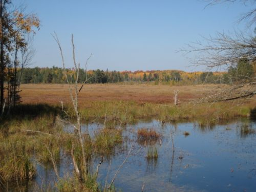 Pristine Waters Preserve, Lot 5 : Minocqua : Oneida County : Wisconsin