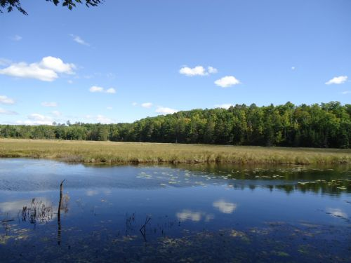 Pristine Waters Preserve, Lot 8 : Minocqua : Oneida County : Wisconsin