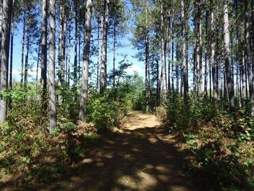 Pristine Waters Preserve, Lot 13 : Hazelhurst : Oneida County : Wisconsin