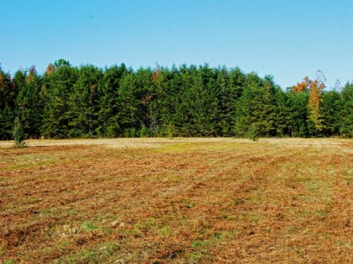 6.89 Acre Unrestricted Land : Landrum : Spartanburg County : South Carolina