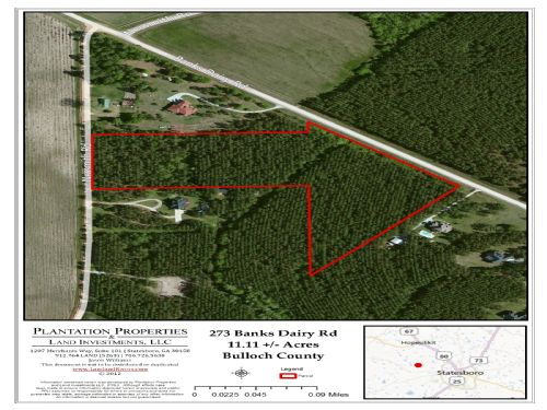 11+/- Acres Banks Dairy Rd : Statesboro : Bulloch County : Georgia