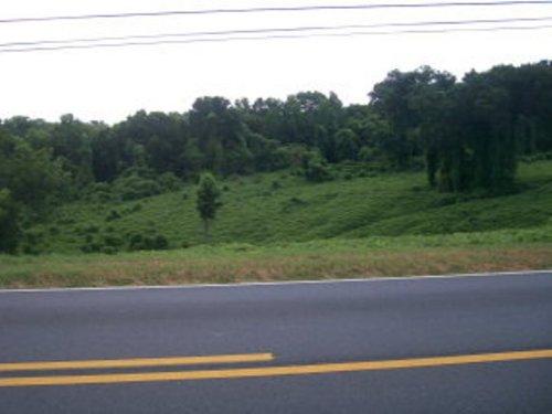 8.18 +/- Acres : Troy : Pike County : Alabama