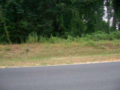 8.71 +/- Acres : Troy : Pike County : Alabama