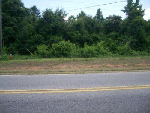 9.96 +/- Acres : Troy : Pike County : Alabama
