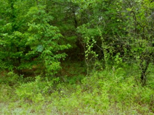 9.5 +/- Acres : Troy : Pike County : Alabama