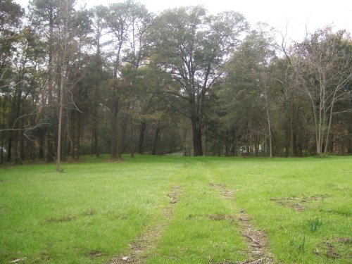 7 Ac Zoned R-2 In Troy : Troy : Pike County : Alabama