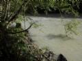 Enjoy Sound Of Running Water Daily