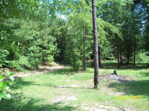 3 Ac Great For Building : Goshen : Pike County : Alabama