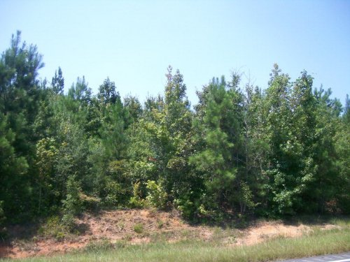 2 +/- Ac Of Hardwood And Pine : Spring Hill : Pike County : Alabama