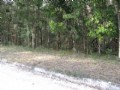 Nice Wooded 2.02 Acre Lot