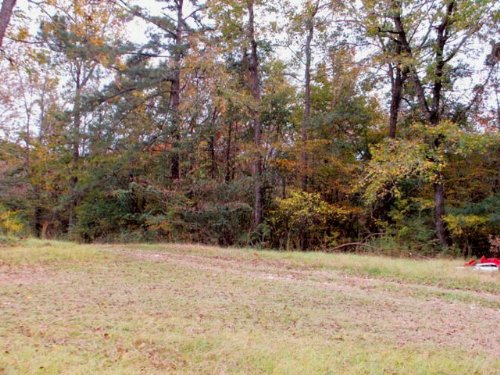 6+/- Ac With An Older Home : Troy : Pike County : Alabama