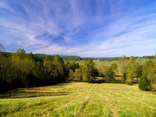 Rolling Farmland : Madison : Virginia