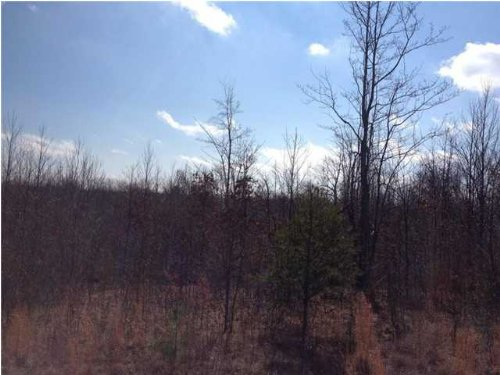 5.1+/- Acres Owner Financing : South Pittsburg : Marion County : Tennessee