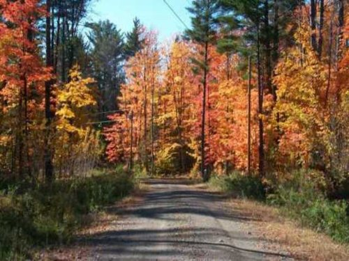 Great Building Lot Access To Lake : Saint Albans : Somerset County : Maine