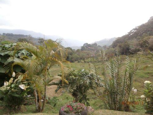 5 Ac Springs-Trout Ponds-Pasture : Orosi : Costa Rica