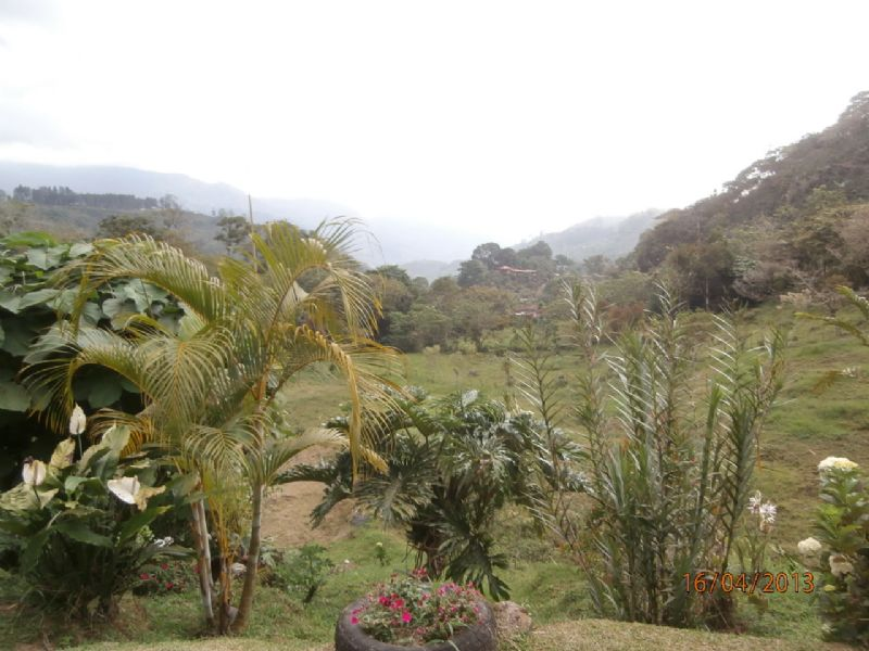 5 Ac Springs, Trout Ponds, Pasture : Orosi : Costa Rica