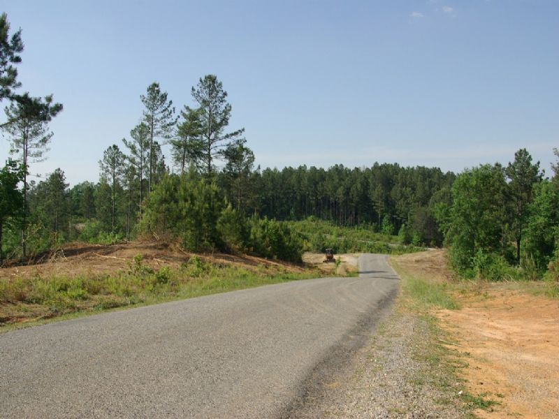 Near Birmingham - Tract 21 Of 28 : Odenville : Saint Clair County : Alabama