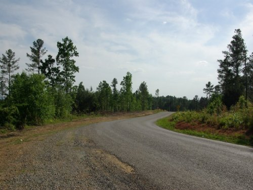 Near Birmingham - Tract 20 Of 28 : Odenville : Saint Clair County : Alabama