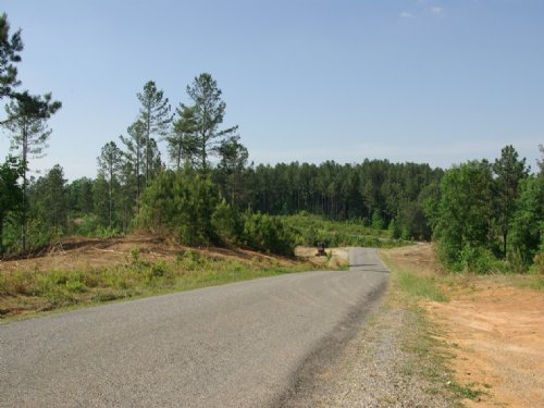 Near Birmingham - Tract 1 Of 28 : Odenville : Saint Clair County : Alabama