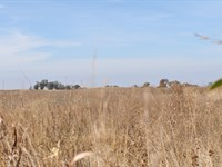 10 Acre Tracts - Building Sites : Enid : Garfield County : Oklahoma