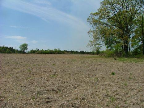 7.3 Acres | Bark Creek Plantation : Waynesboro : Burke County : Georgia