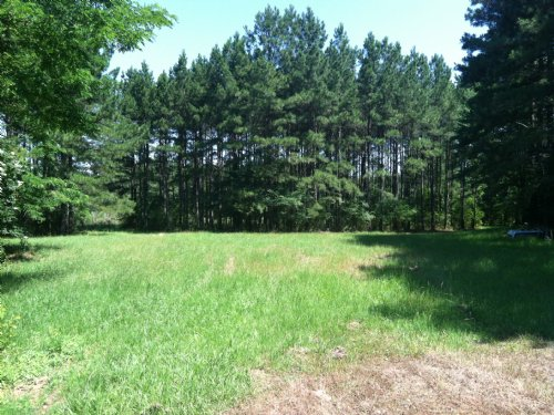 Great Homesite Ms Hwy 463 : Madison : Mississippi