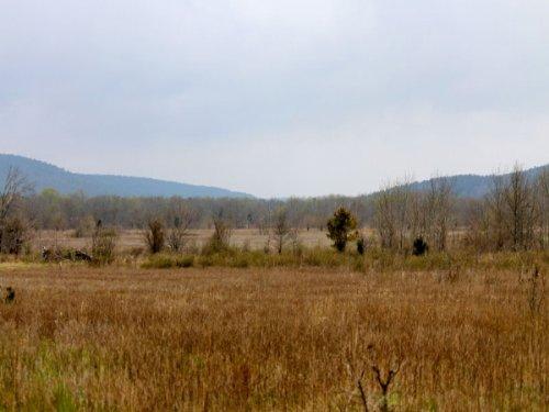 5.16 Acre Daisy Meadows. Terms : Clayton : Pittsburg County : Oklahoma