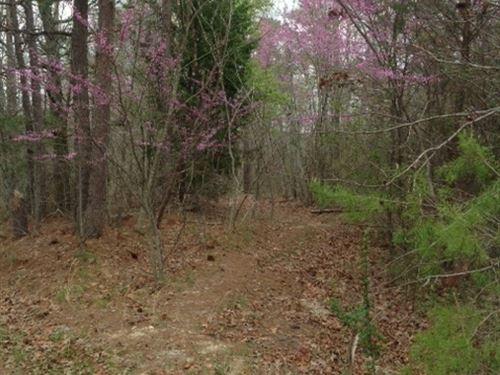 8-026 County Road 27 : Springville : Blount County : Alabama