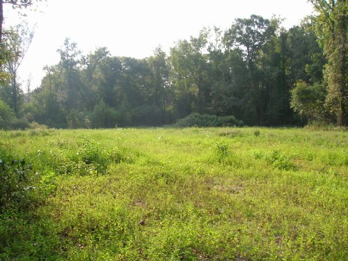 8 Ac. Ingram Rd. Millbrook : Millbrook : Elmore County : Alabama