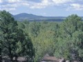 Northern Az Forested Cabin Site