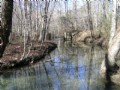 Creek, No Restrictions : Palmer : Grundy County : Tennessee