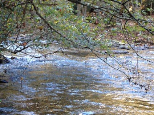 Mountain Trout Stream : Ellijay : Gilmer County : Georgia