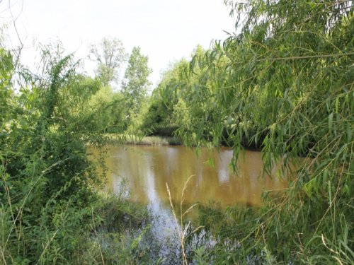 8.61 Acre Mccoy Creek.terms $470/mo : Clarksville : Red River County : Texas
