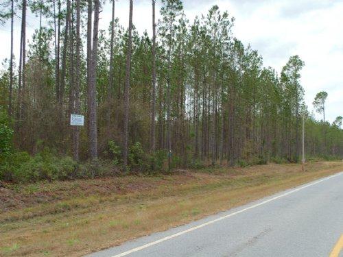 Tract 1 - Small Acreage : Homerville : Clinch County : Georgia