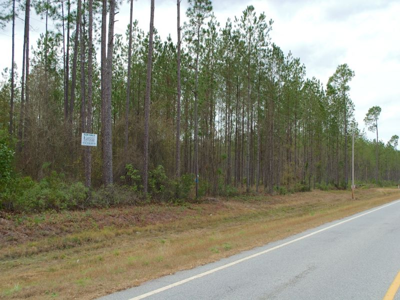 Nice Homesite In Clinch County : Homerville : Clinch County : Georgia