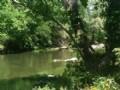 10 Acres - Riverfront (#14919)