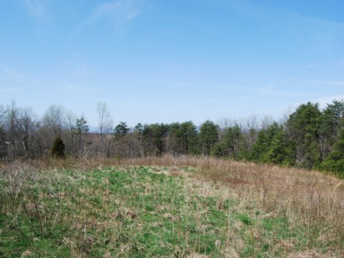 11.63 Acres Near Cooley Springs : Chesnee : Spartanburg County : South Carolina