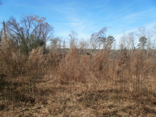 12.64 Acres W/creek In Arnoldsville : Arnoldsville : Oglethorpe County : Georgia