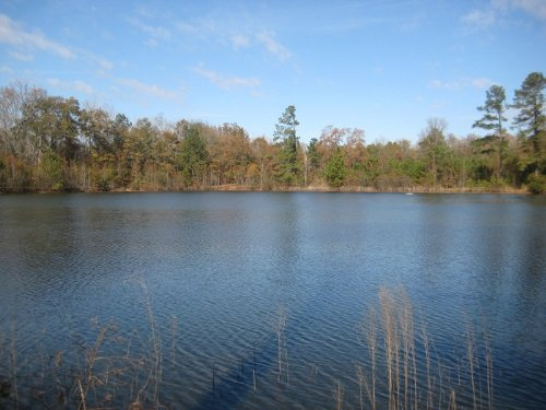 Chapman Pond Tract - New Low Price : Gray : Jones County : Georgia