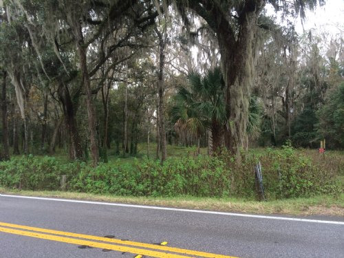 Owner Financing,gorgeous 9.2 Acres : Brooksville : Hernando County : Florida