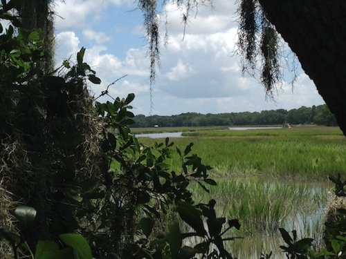 16.81 Acres Creek House Lane : St. Helena : Beaufort County : South Carolina