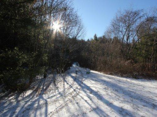 Small Acreage, Creek In Blue Ridge : Troutdale : Grayson County : Virginia