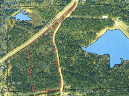 8.26 +/- Ac- All Wooded : Goshen : Pike County : Alabama