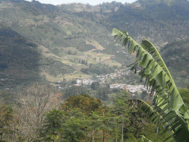 5.8 Acre Mountain Farm, Spring : Orosi : Costa Rica
