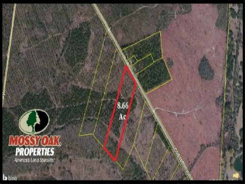 8 Acres On Paved Road  Reduced : Woodbine : Camden County : Georgia