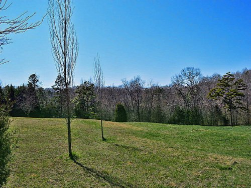 4.9 Acre Residential Lot : Roebuck : Spartanburg County : South Carolina