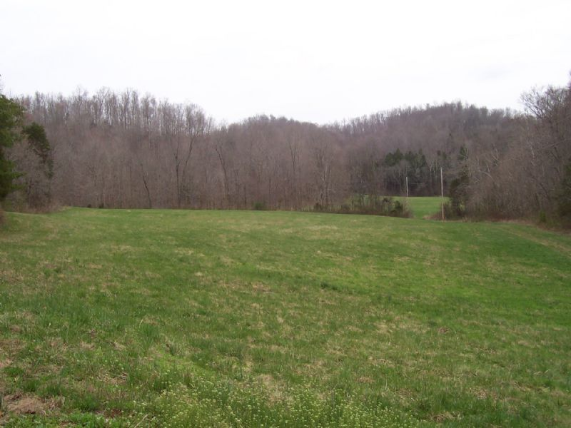 20 Acre Tract : Tompkinsville : Monroe County : Kentucky