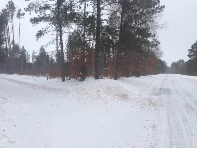 5 Acres In Boulder Junction : Boulder Junction : Vilas County : Wisconsin