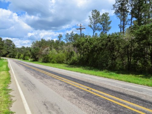 Tx - Panola - Fm 999 - Timberland W : Gary City : Panola County County : Texas