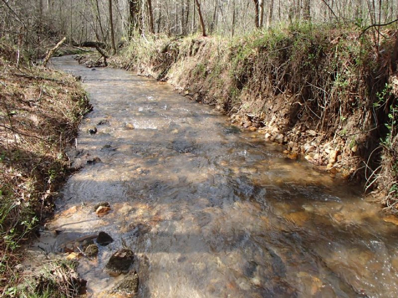 8ac On 674 Feet Of Trout Stream : Ellijay : Gilmer County : Georgia